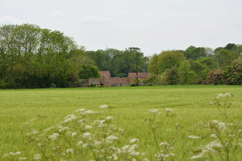 rural view over the Little Dunham fields